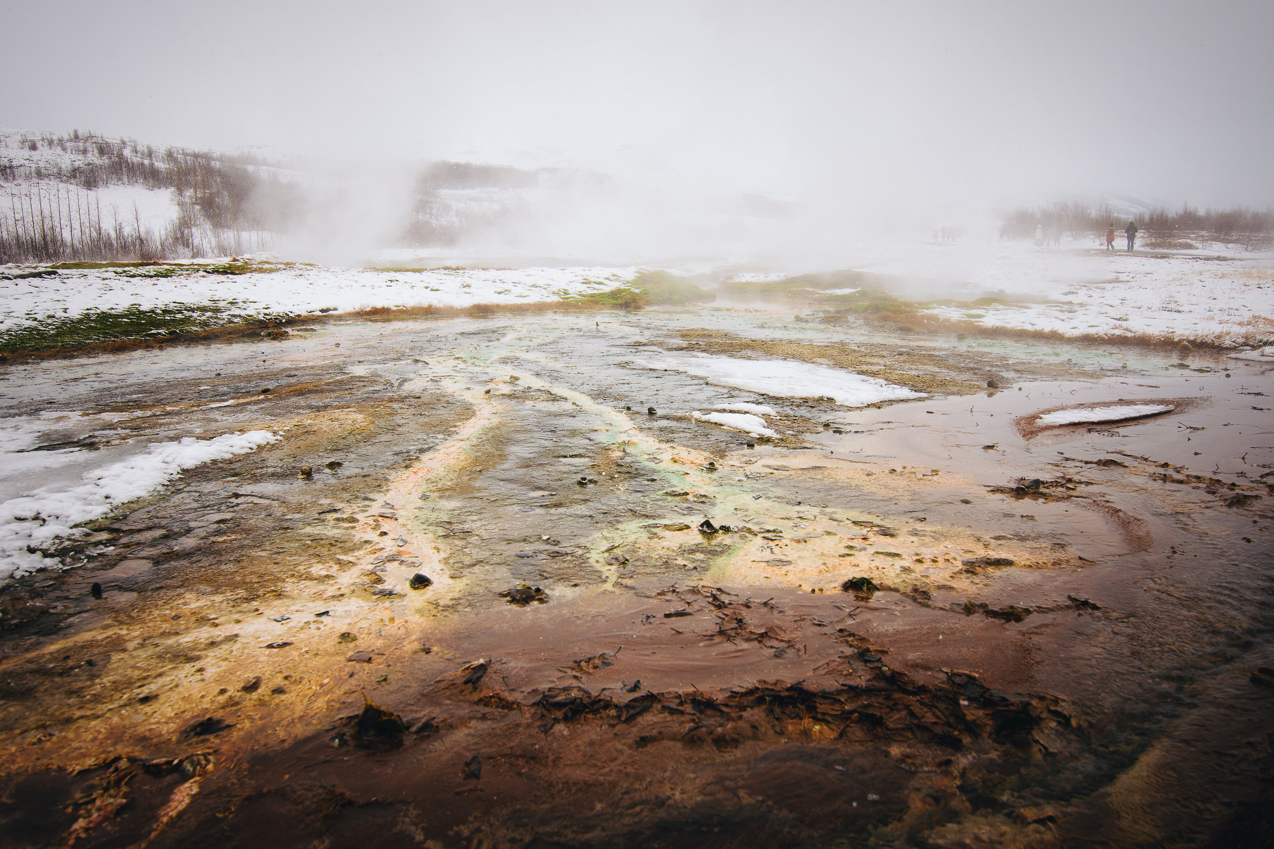 Bacterial mats in the geysers.