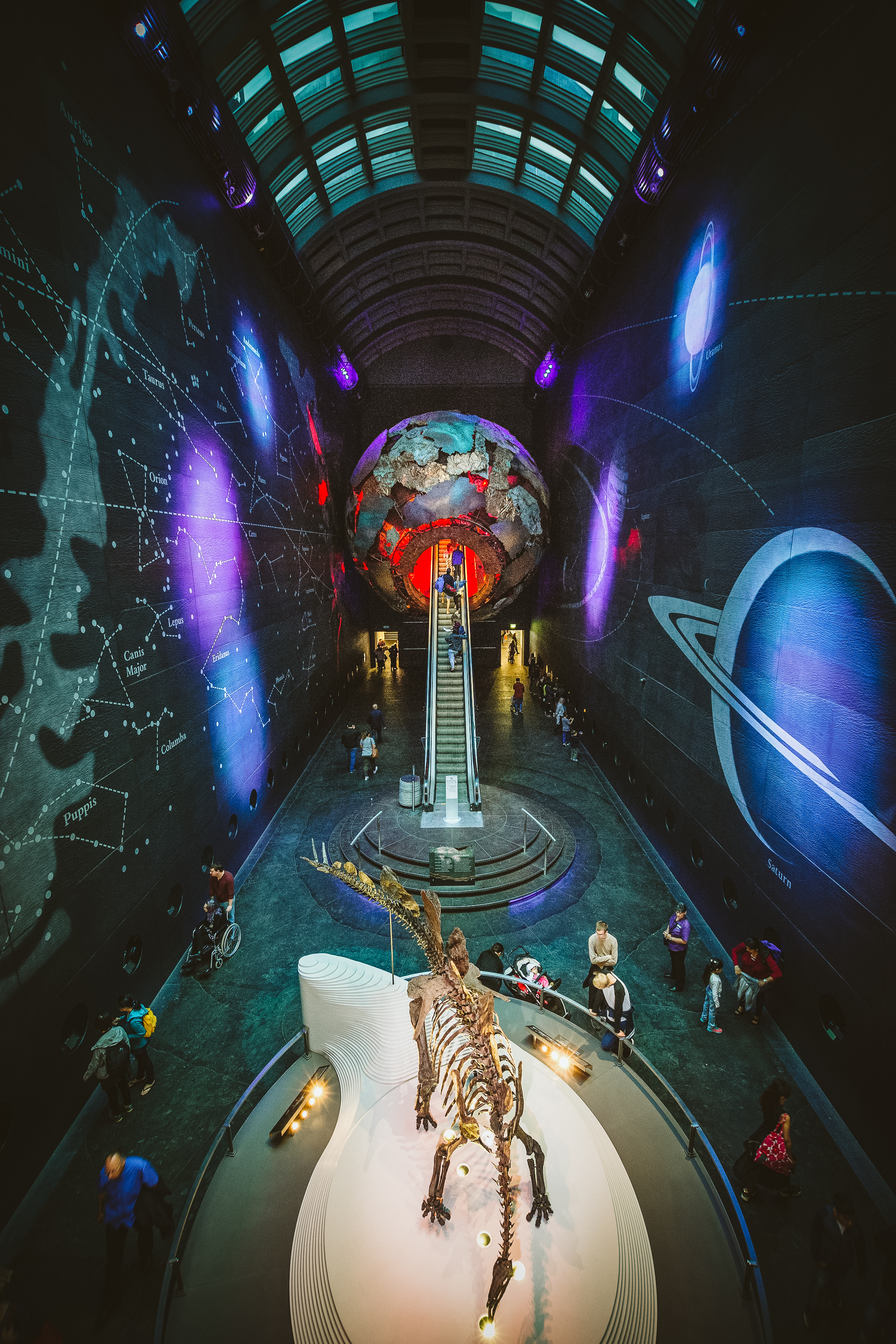 Again, a view of the Natural History Museum atrium, from dinosaurs to a journey to the centre of the earth.