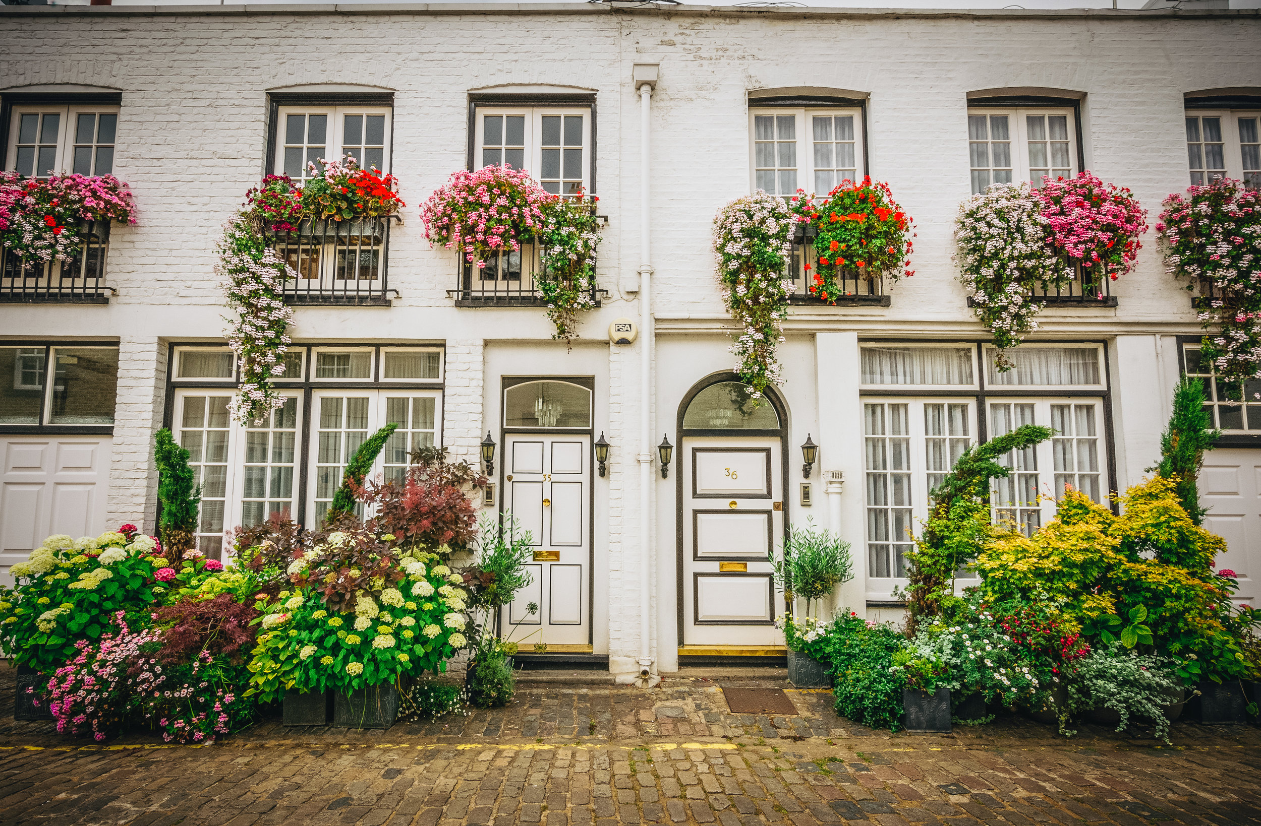 The mews of Kensington. It's weird to me than many of these were horse stables now converted into beautiful housing, adorned with flowers...and the occasional horse dropping.