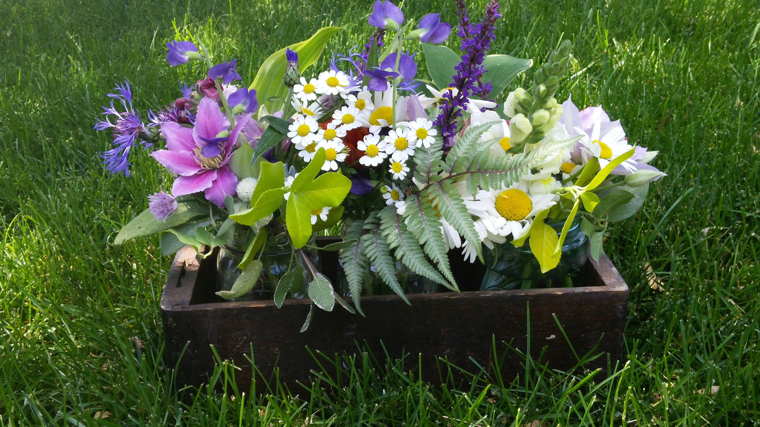 WILDFLOWER BOX PURPLES.jpg