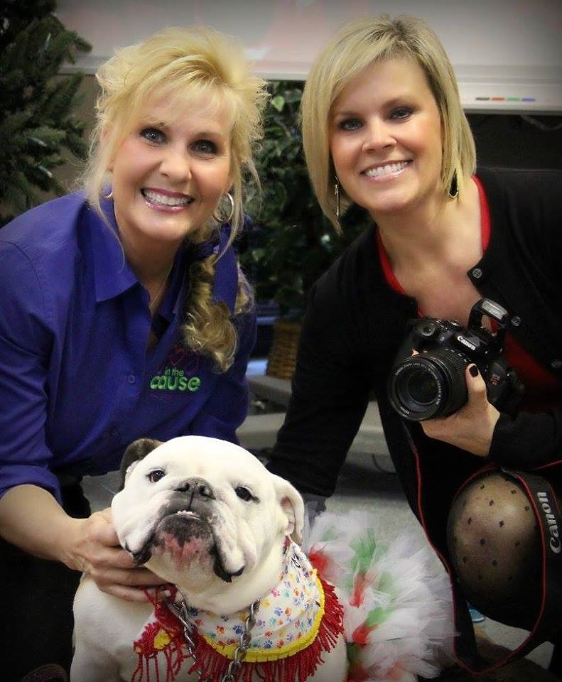 Mavis Pearl - the sweetest bulldog from Joy in the Cause