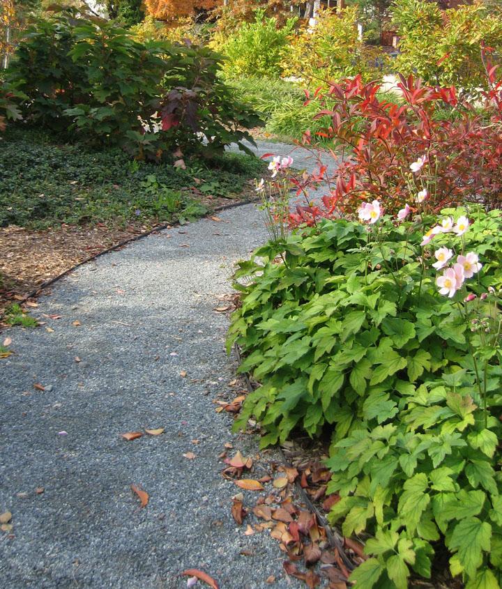 Crispus Attucks Memory Garden