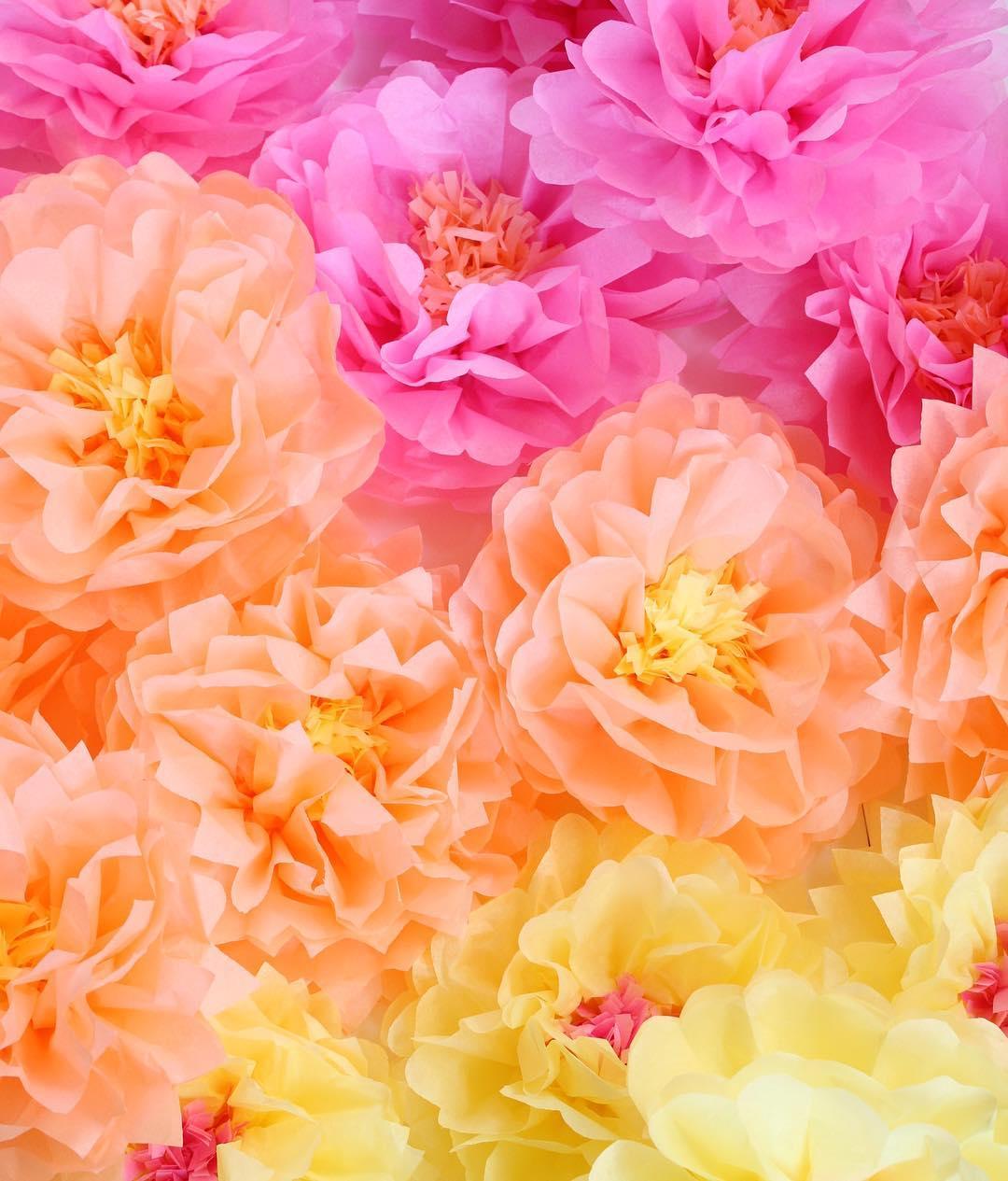 tissueflowers.jpg