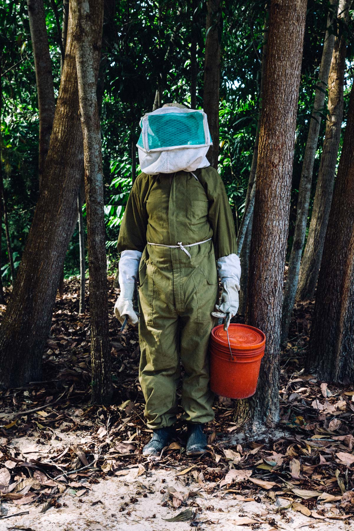 Ali harvested eight liters of honey last year and expects to double that amount as he harvests in the next few months.