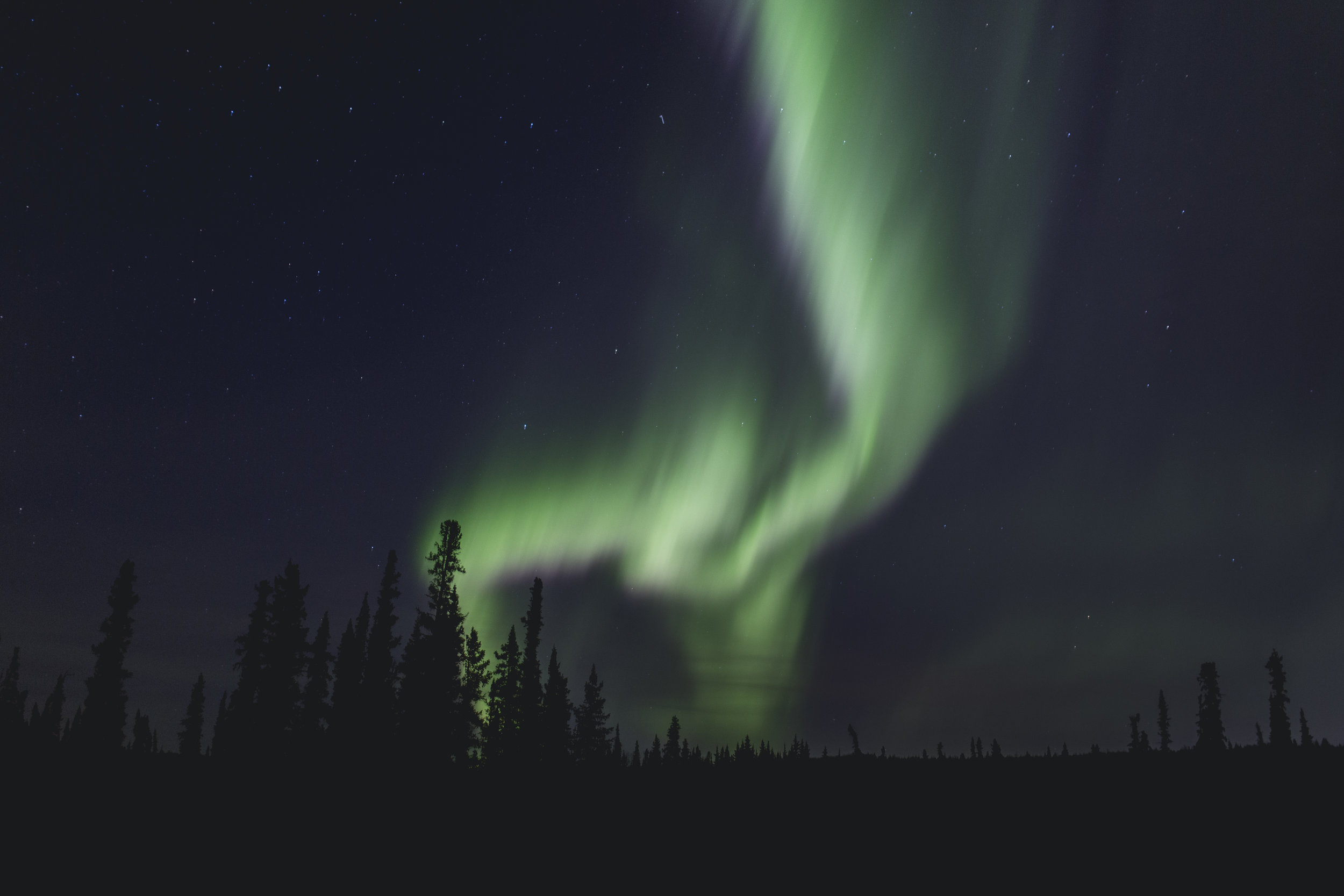 Here is a shot from Fairbanks, Alaska. The tree line presented a nice silhouette to contrast the bright green of the aurora borealis. This image was shot at a focal length of 35mm, f/1.4, 2.0 seconds, and and ISO of 640.