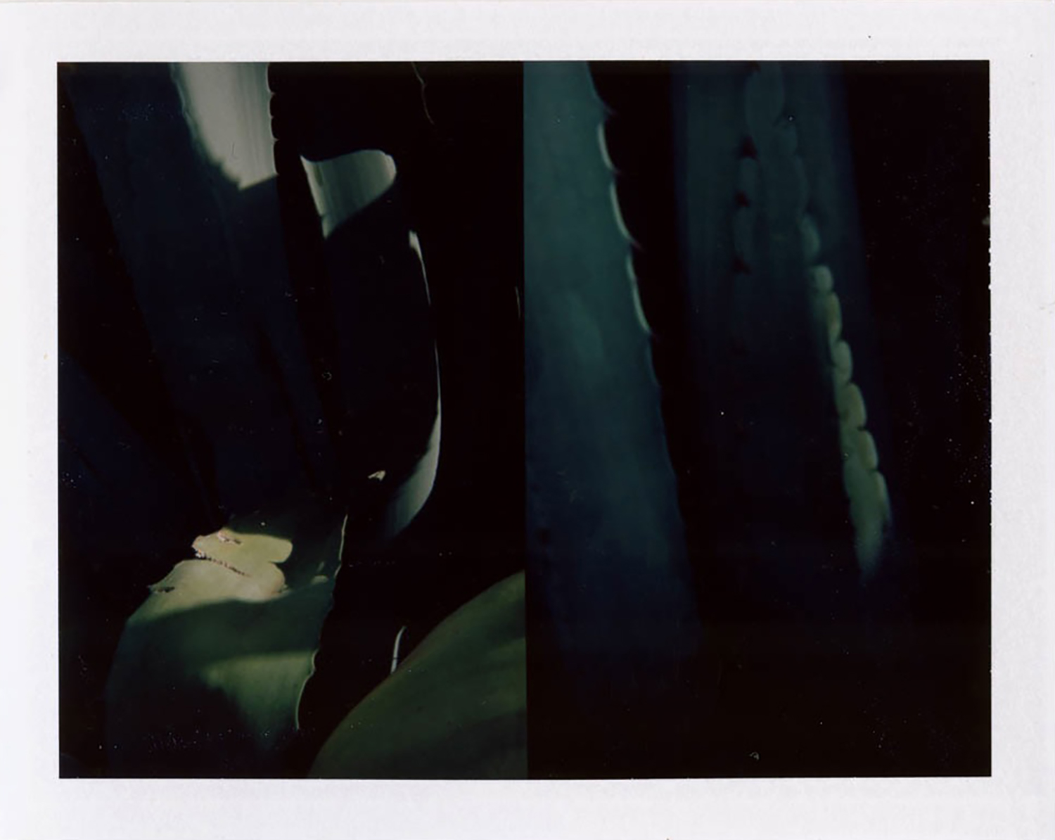 I.D.003, The Polaroid Revolutionary Workers, 2013, Polaroid Picture, 107mm x 86mm