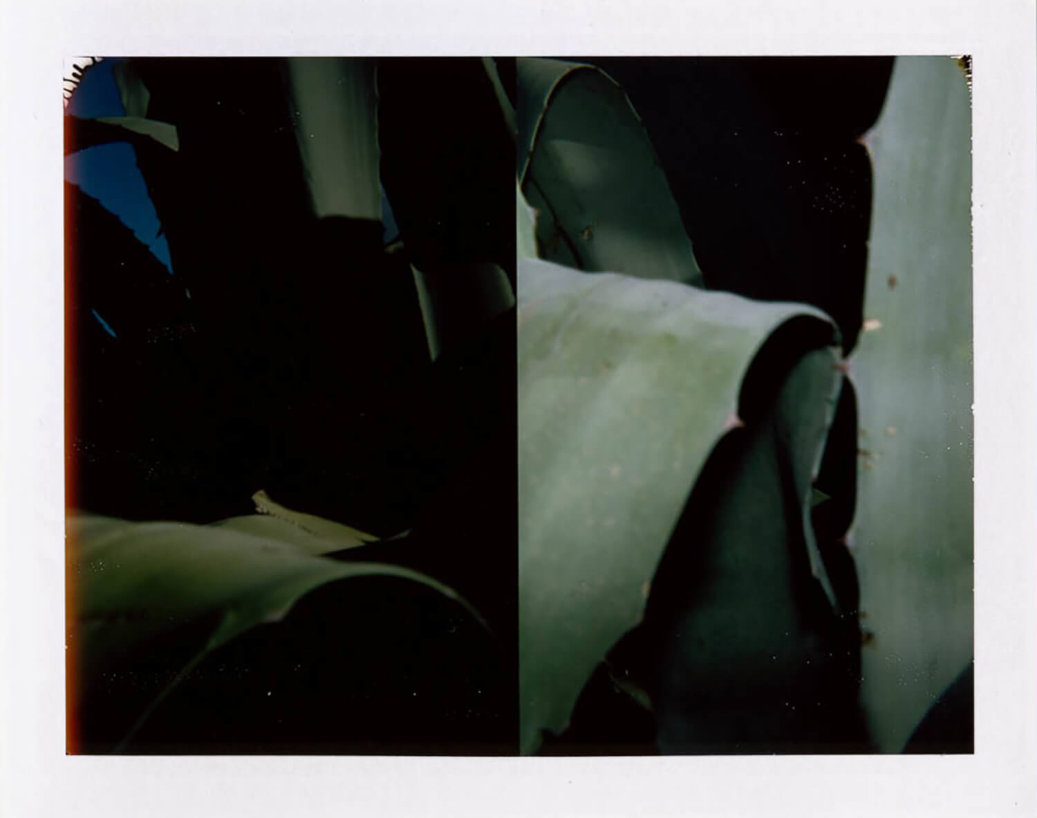 I.D.016, The Polaroid Revolutionary Workers, 2013, Polaroid Picture, 107mm x 86mm