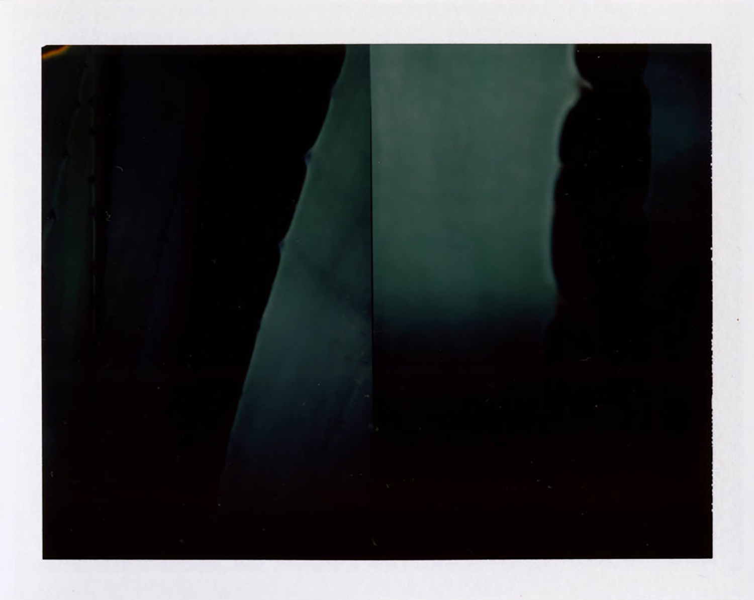 I.D.012, The Polaroid Revolutionary Workers, 2013, Polaroid Picture, 107mm x 86mm 2