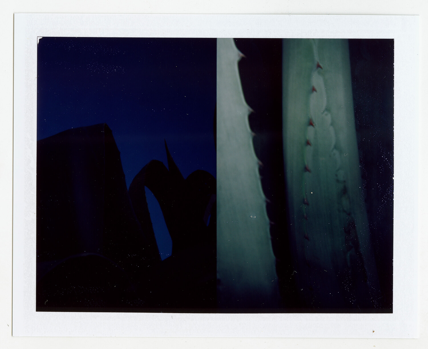 I.D.062, The Polaroid Revolutionary Workers, 2013, Polaroid Picture, 107mm x 86mm