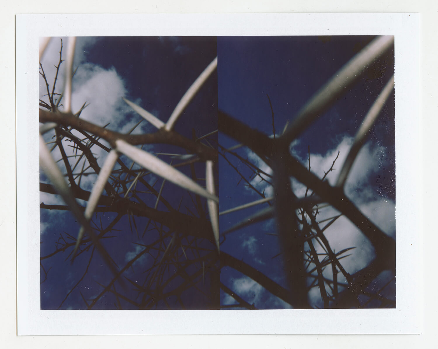 I.D.067, The Polaroid Revolutionary Workers, 2013, Polaroid Picture, 107mm x 86mm