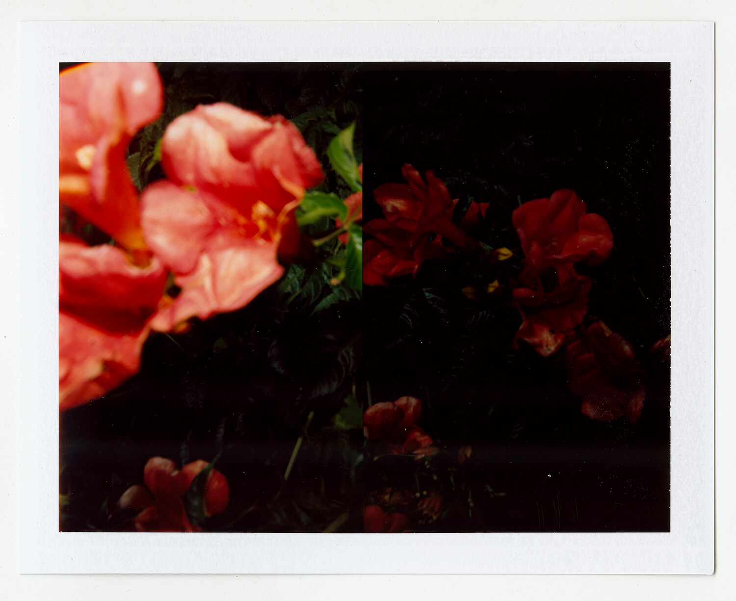 I.D.081, The Polaroid Revolutionary Workers, 2013, Polaroid Picture, 107mm x 86mm