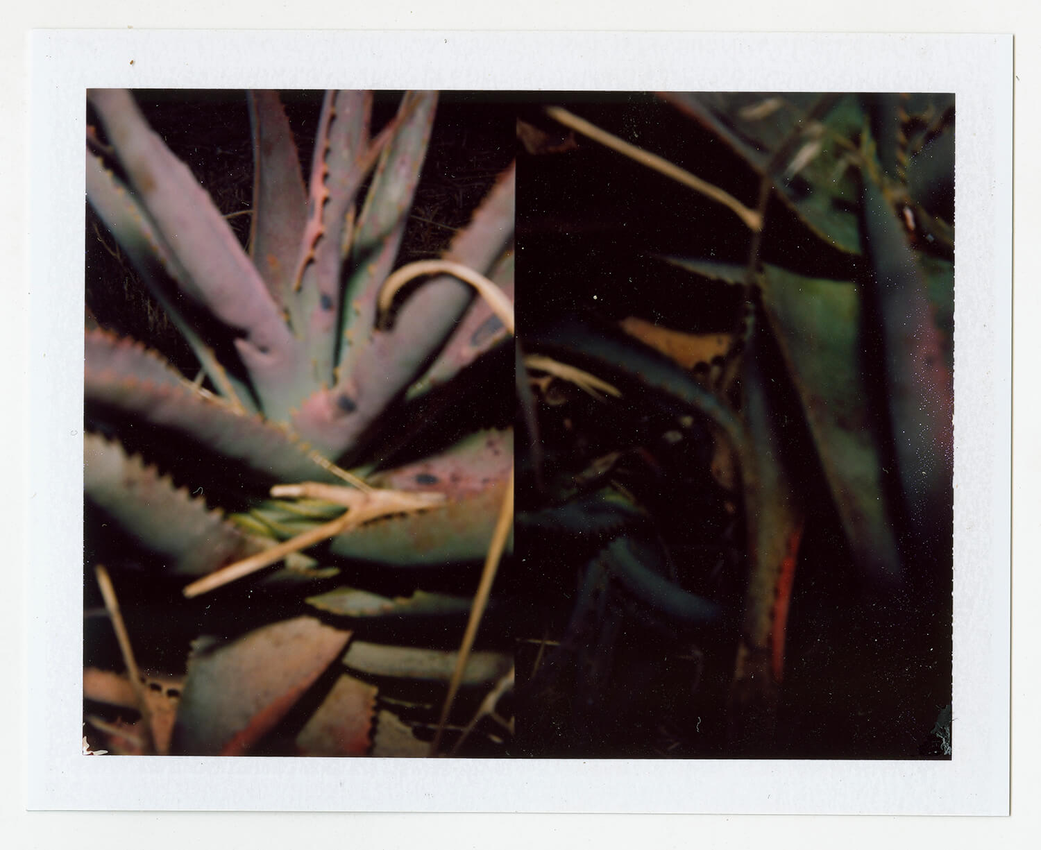 I.D.087, The Polaroid Revolutionary Workers, 2013, Polaroid Picture, 107mm x 86mm