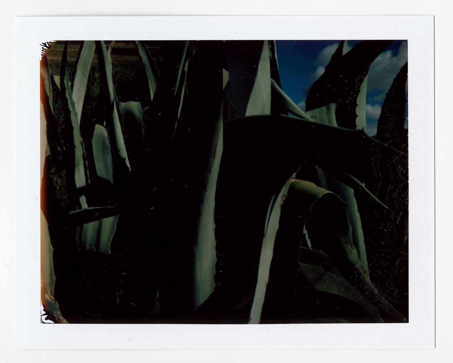 I.D.097, The Polaroid Revolutionary Workers, 2013, Polaroid Picture, 107mm x 86mm