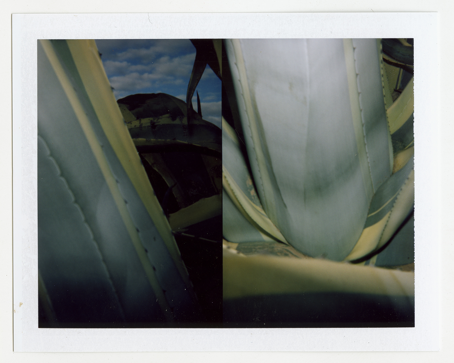 I.D.057, The Polaroid Revolutionary Workers, 2013, Polaroid Picture, 107mm x 86mm