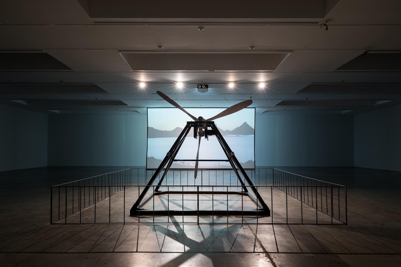 Dodo, Fundación Jumex Arte Contemporáneo, Installation view, 2014 Image © Moritz Bernoully