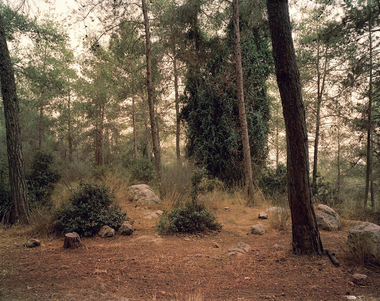 Rabin Park, (c-type print, 19x23-, 2006)