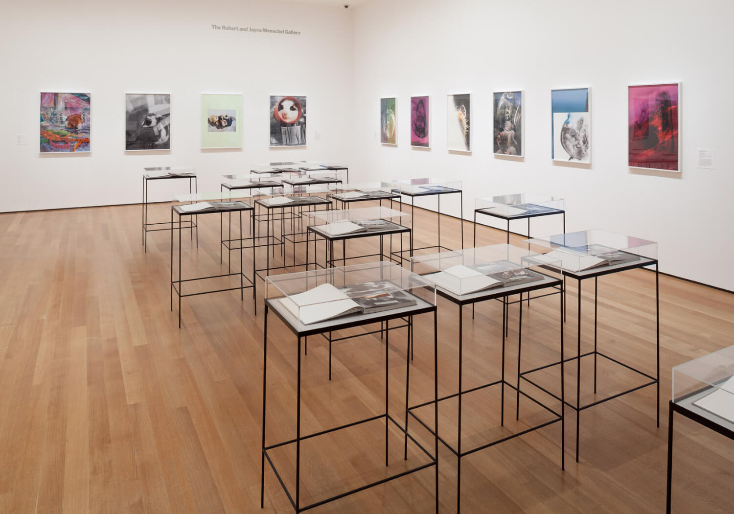 Installation view of the exhibition New Photography 2013. © 2013 The Museum of Modern Art, New York. Photograph by Thomas Griesel - 2.jpg