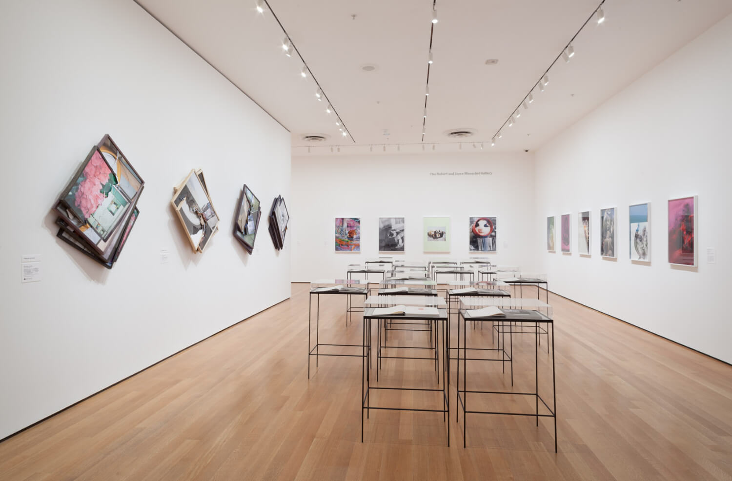 Installation view of the exhibition New Photography 2013. © 2013 The Museum of Modern Art, New York. Photograph by Thomas Griesel - 5.jpg