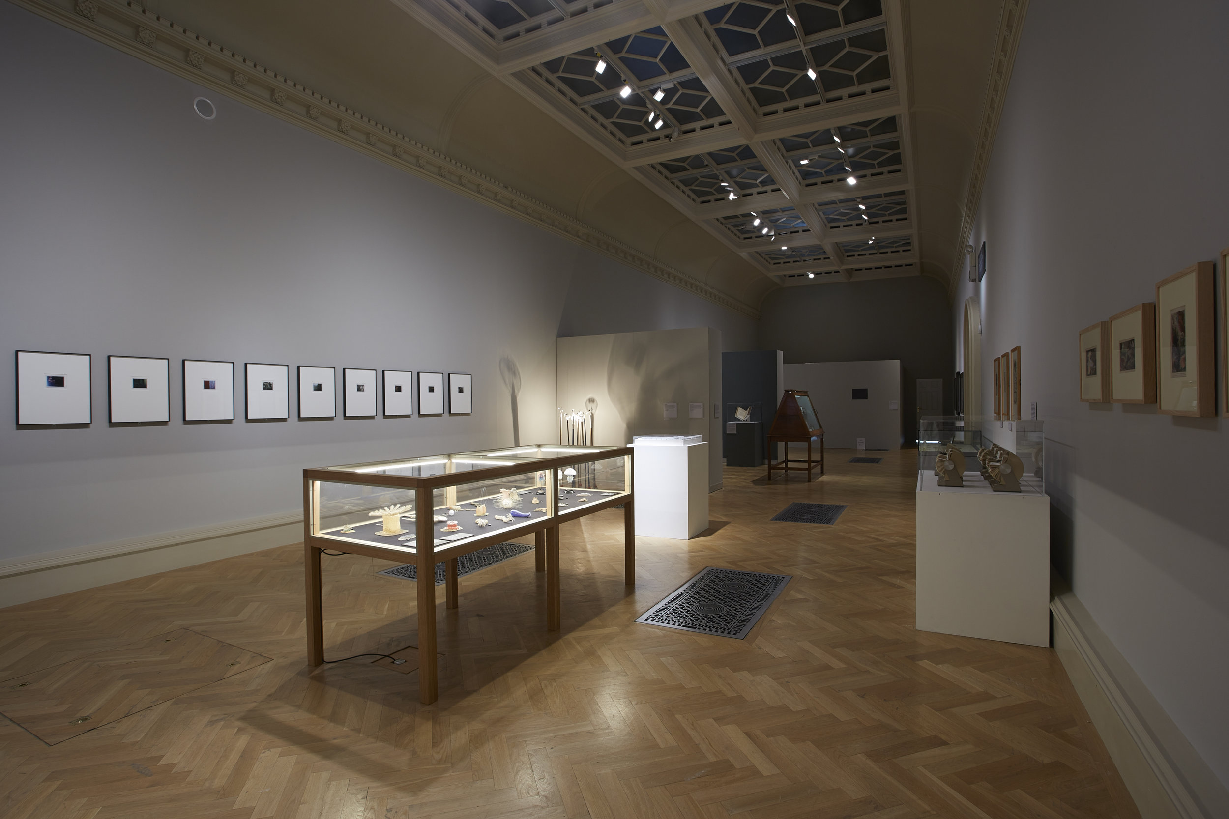 Installation view, Curiosity: Art and the Pleasures of Knowing, Turner Contemporary 23 May – 15 September 2013. Photo Steve White. Courtesy Hayward Touring