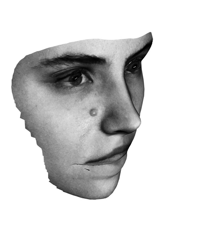 The Revolutionary, Spirit is a bone, 2013, glass, paint, C-type print, string, 40cm x 50cm