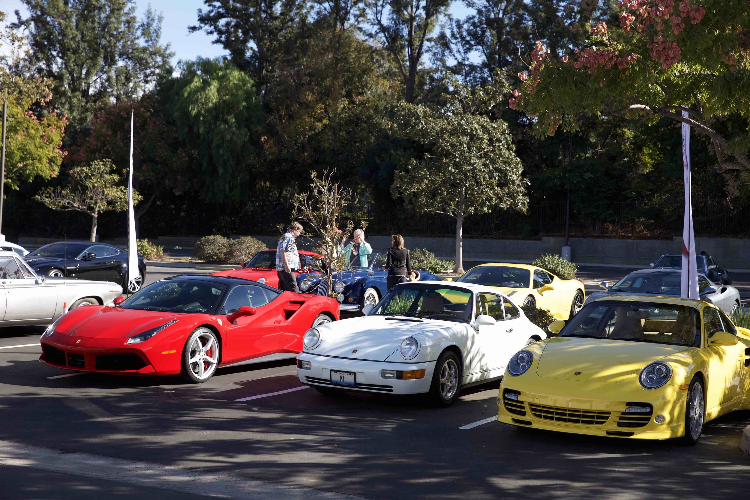FLAS Cars.jpg