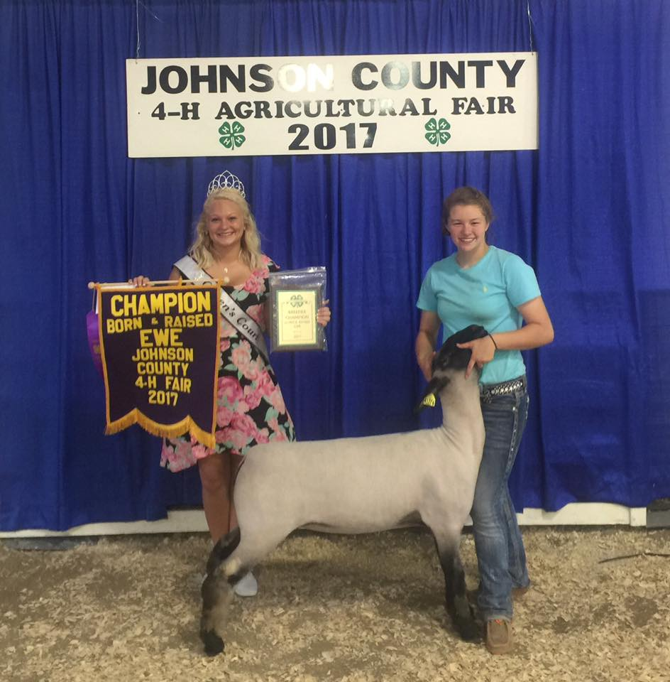 Kaitlyn Hicks - Grand Champ. B&B Ewe | Johnson Co. Fair | IN