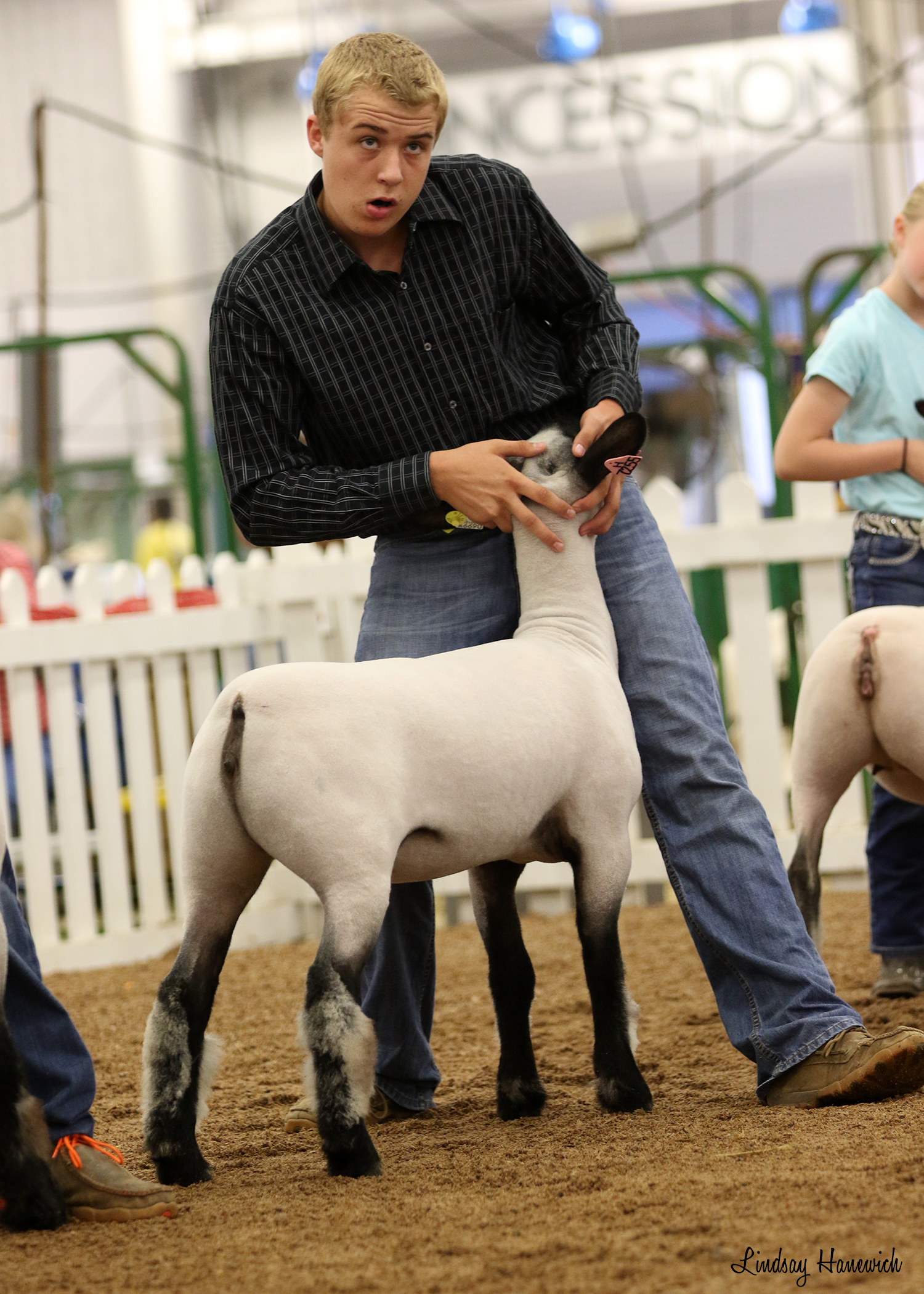 Korbin Heminger - Class Winner | Indiana State Fair