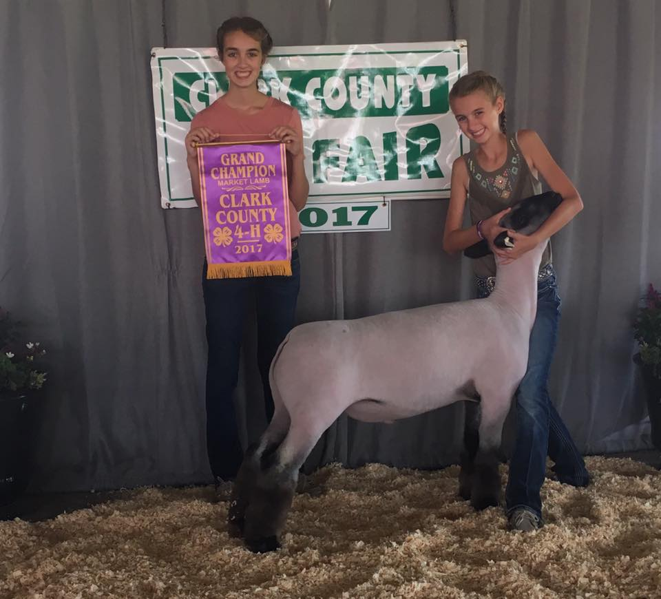 Karli Titus - Grand Champion Lamb | Clark Co. Fair | IL