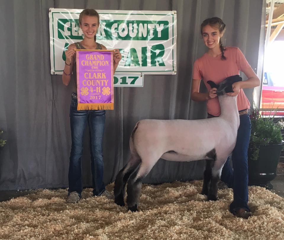 Kami Titus - Grand Champion Ewe | Clark Co. Fair | IL