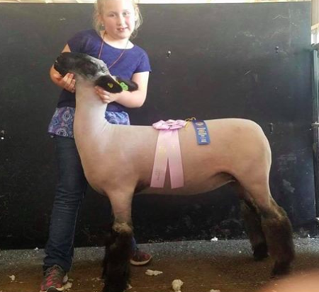 Res. Champion - Washington Co Open (IN)Shown by Tatum Dryden