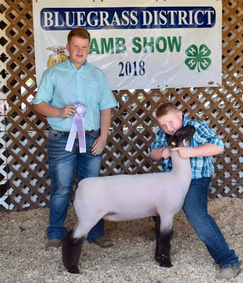Res. Grand Comm Ewe - Bluegrass District Show (KY) Shown by Landon Hack