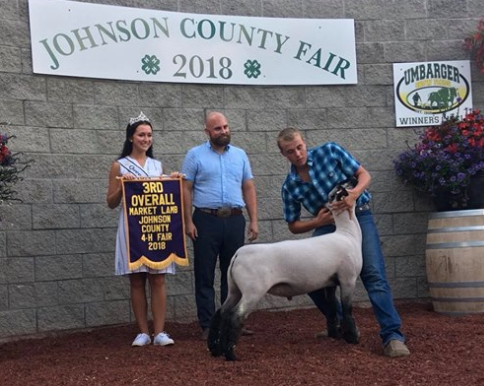 3rd Overall Res. Champion Hamp - Johnson Co. (IN) Shown By Korbin Heminger
