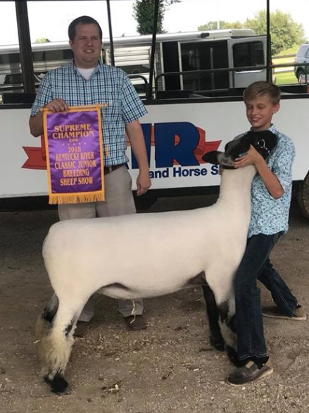 Grand Champion Ewe - Kentucky River ClassicShown by Corbin Coyle