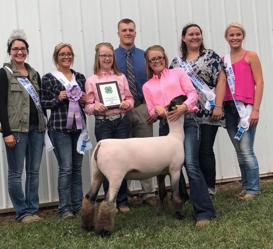 Res. Grand Champion Ewe - Fayette Co. (IN) Shown by Morgan Hauger