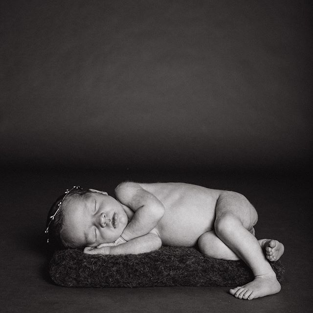Would love to be able to sleep as peacefully as this little princess.⠀ *⠀ *⠀ *⠀ *⠀ *⠀ #wildwoodphotographychi #shoplocal #roscoevillagechicago #thepursuitofjoyproject #mymagicalmoments #dearphotographer #theeverydayportrait #theheartcaptured #candidslumber #makingmemories #lifewellcaptured #simplychildren #ig_baby #candidchildhood #thatsdarling #makeportraits #jjitskids #livethelittlethings #MagicofChildhood #letthembelittle #newbornbaby #littleandbrave #childofig #lookslikefilmkids #documentyourdays #ig_newborn #theartofchildhood #kidsforreal #chicagofamilyphotographer #chicagonewbornphotography