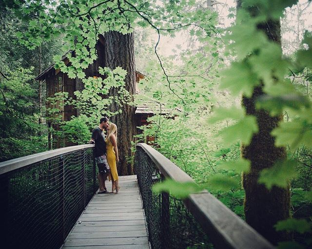 Throwback to this time last year when we got to stay in a treehouse @treehousepoint in Washington! I'm looking to do another cool stay somewhere this year. Where is the coolest place you've ever spent the night? *⠀ *⠀ *⠀ *⠀ *⠀ #wildwoodphotographychi #roscoevillagechicago #loveandwildhearts #makeportraits #authenticlovemag #livethelittlethings #alwaysadventure #portraitoftheday #loveintentionally #getoutside #loveauthentic #engagementshoot #coupleshoot #makemoments #beyondthewanderlust #couplegoals #firstsandlasts #chicagophotographer #chicagoportraitphotographer #lifestylephotographer #couples #engagement #engagementphotos #engagementsession #candidmoments #thecandidclass #igmasters #documentyourdays #choosejoy #thelifestylecollective