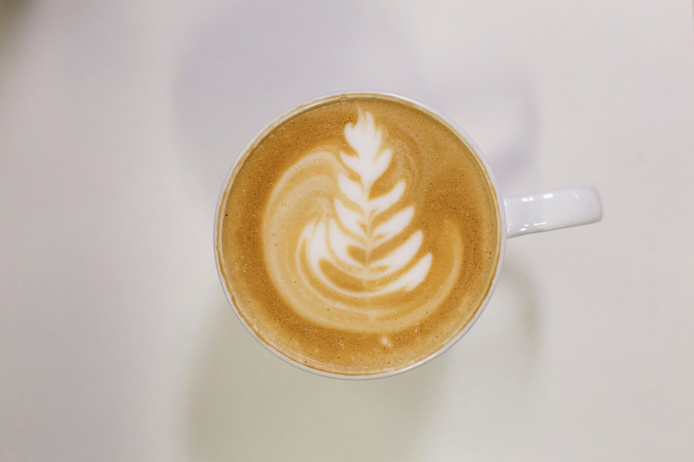 Brewed Latte