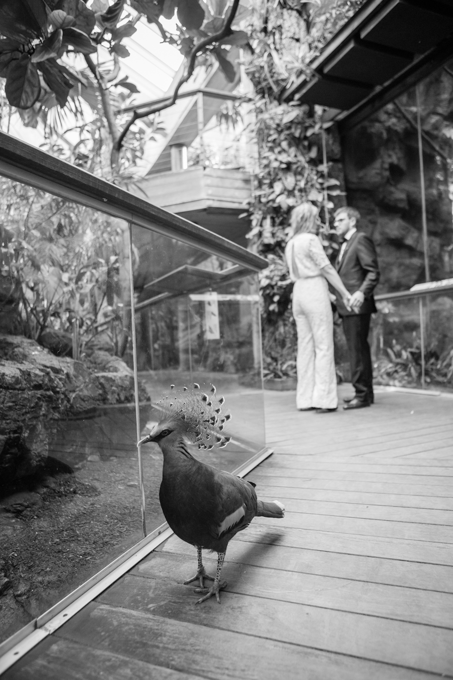 central park zoo wedding ang weddings and events-11.jpg