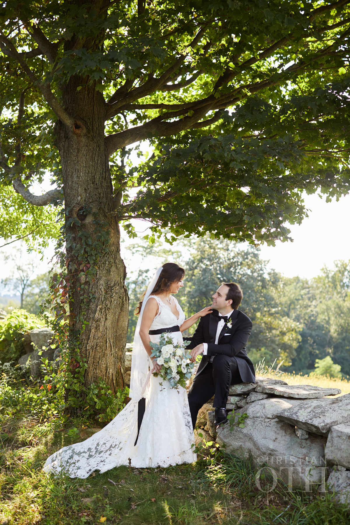Bride and groom under a tree at Blue Hill at Stone Barns wedding