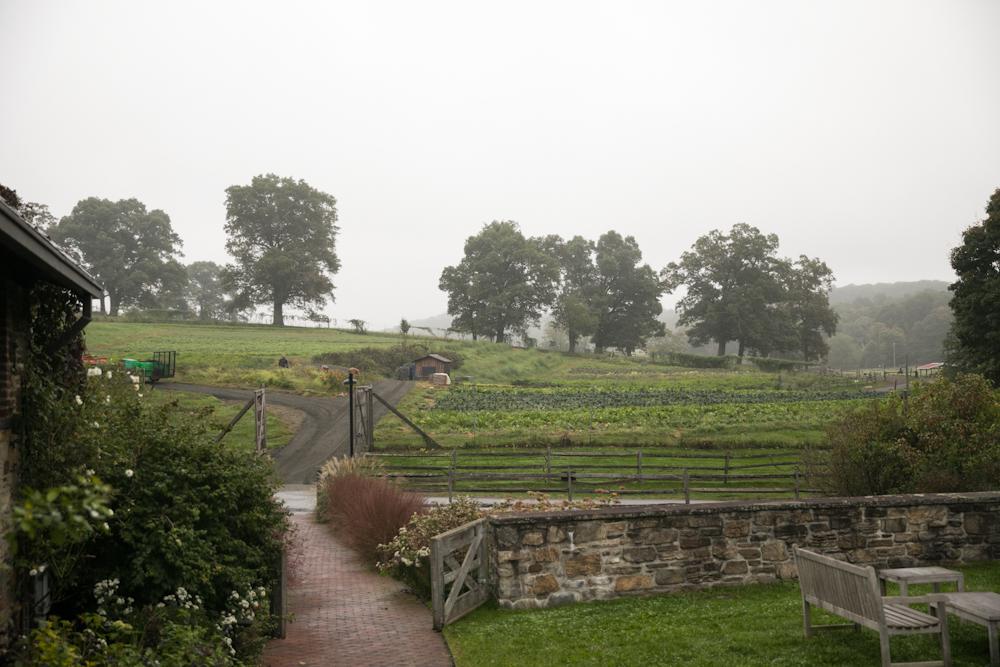 blue-hill-at-stone-barns-wedding-farm-fields.jpg
