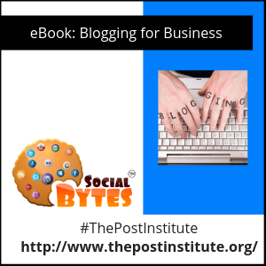 DrPost-eBook-Blogging-4-Business-300x300.png