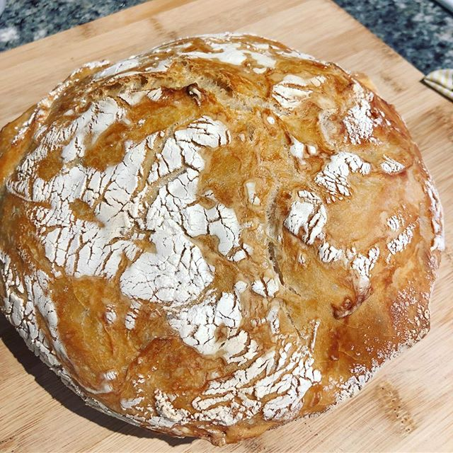#jimlahey's no knead bread recipe was the perfect solution to making bread hassle free during the busy thanksgiving week 💫 #bread #breadmaking