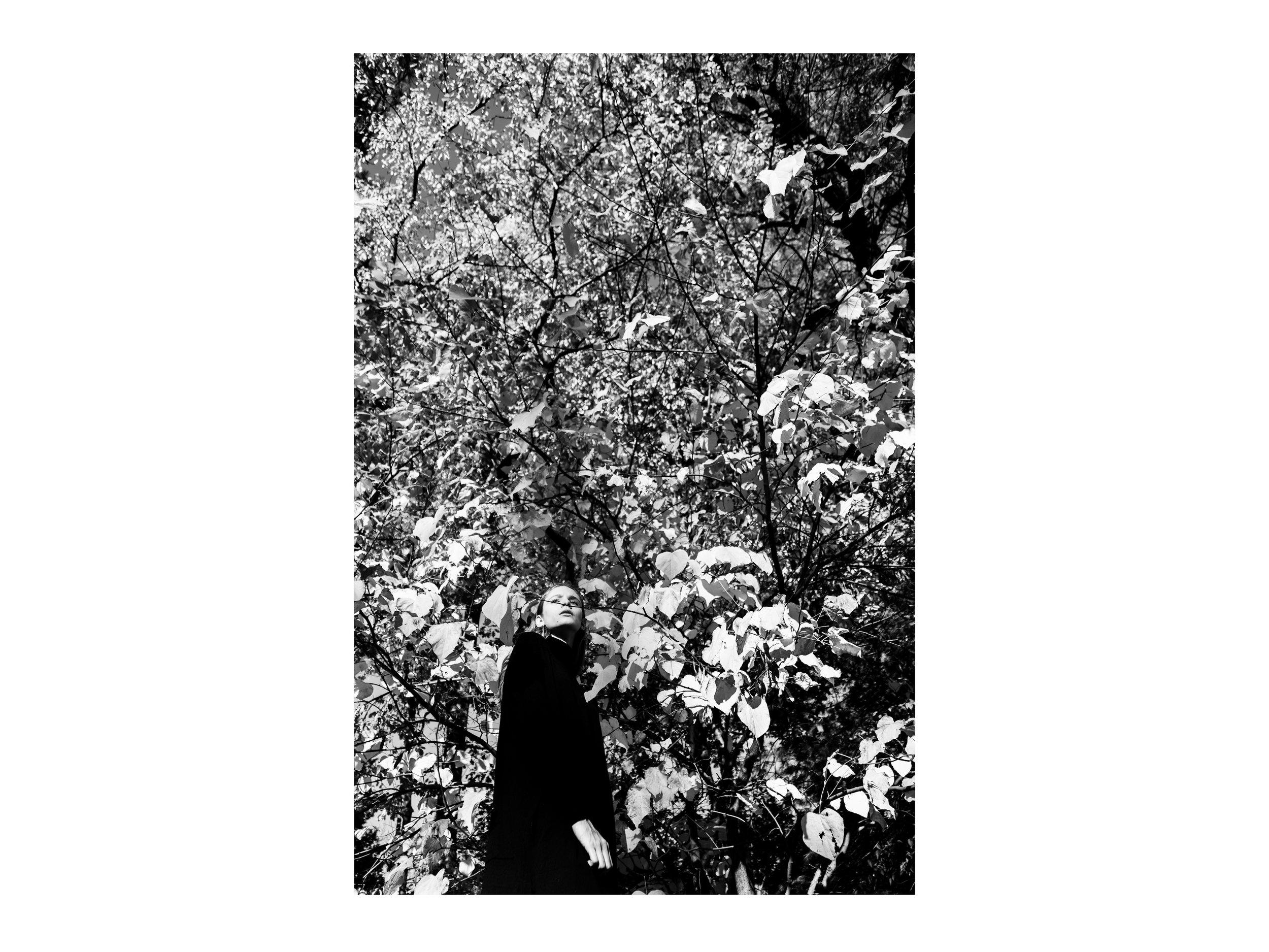 Untitled-416.jpg