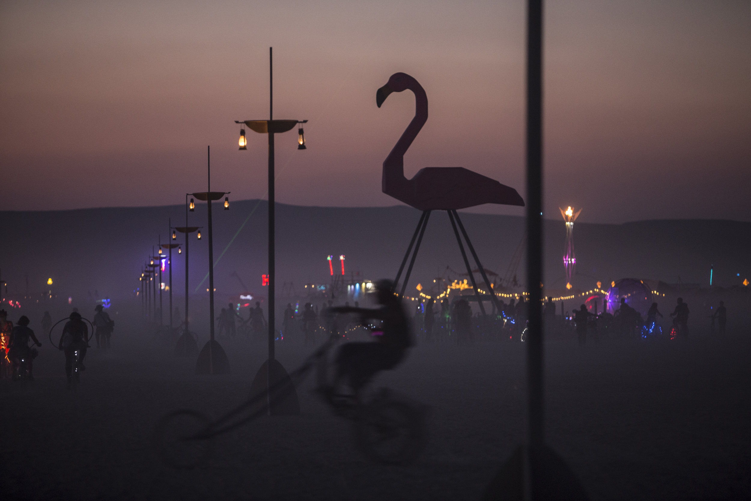 IMG_5205_flamingo_sunset.jpg