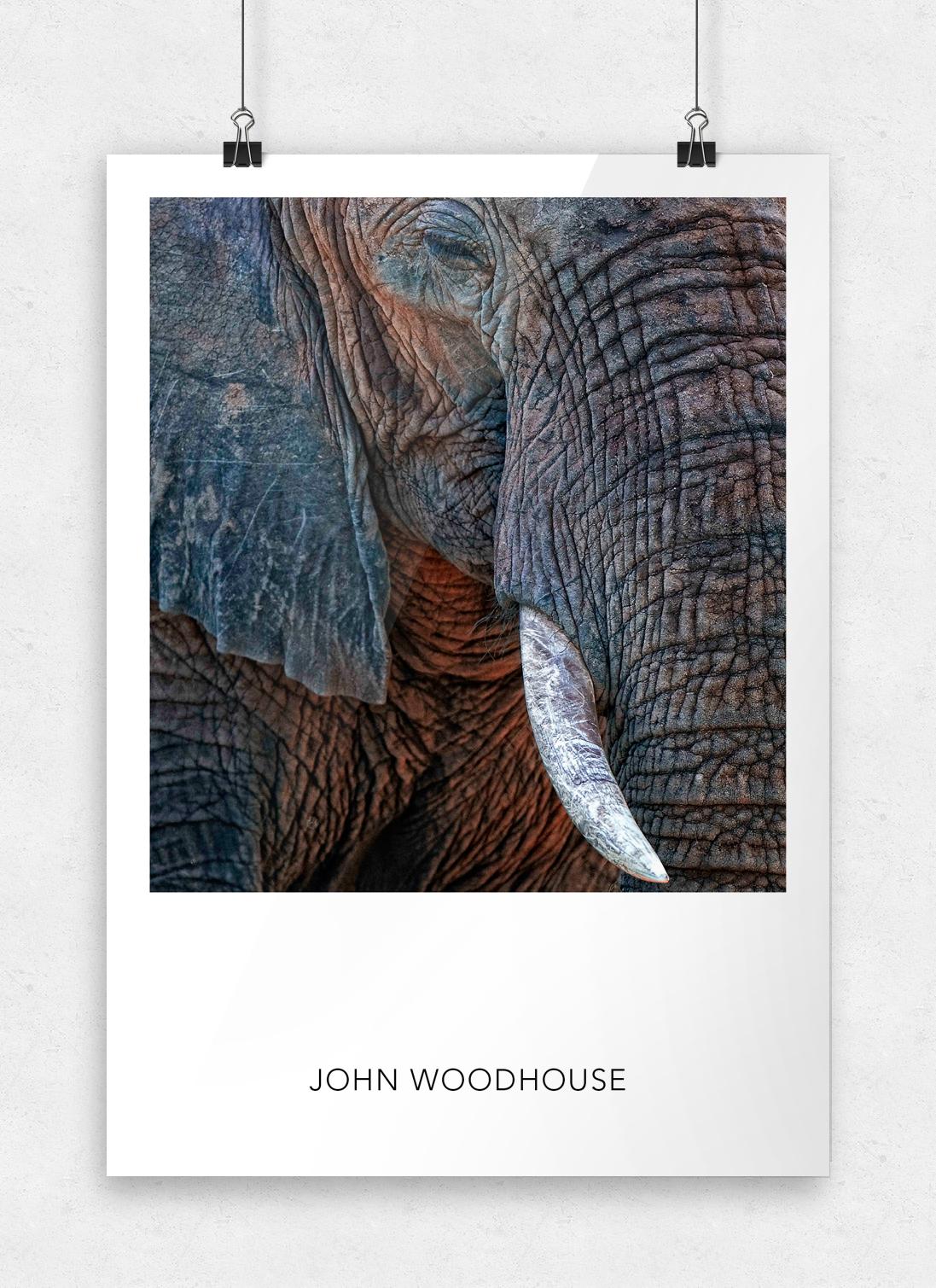 JW-Posters-Template_10.jpg