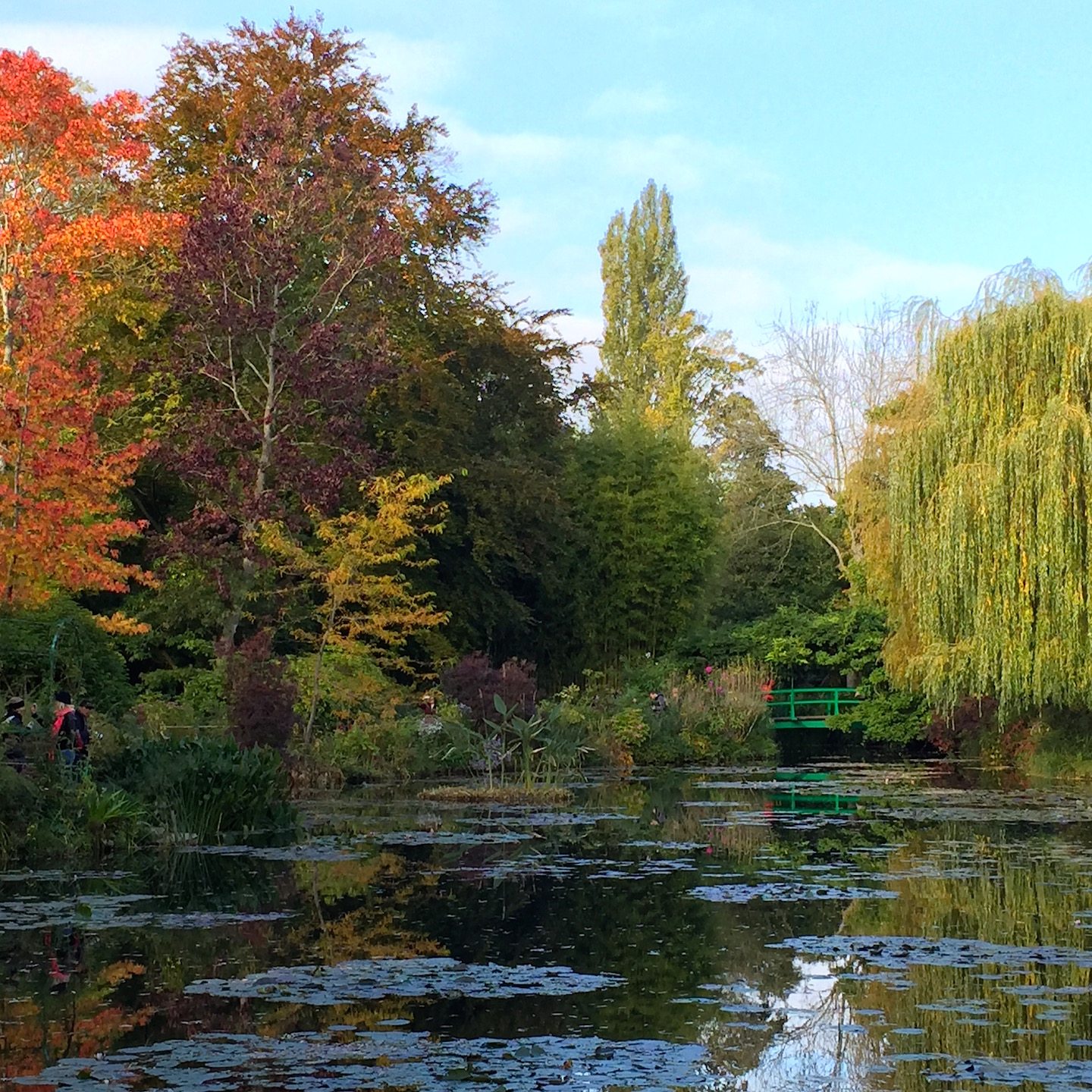 Monet's Pond, October 2015