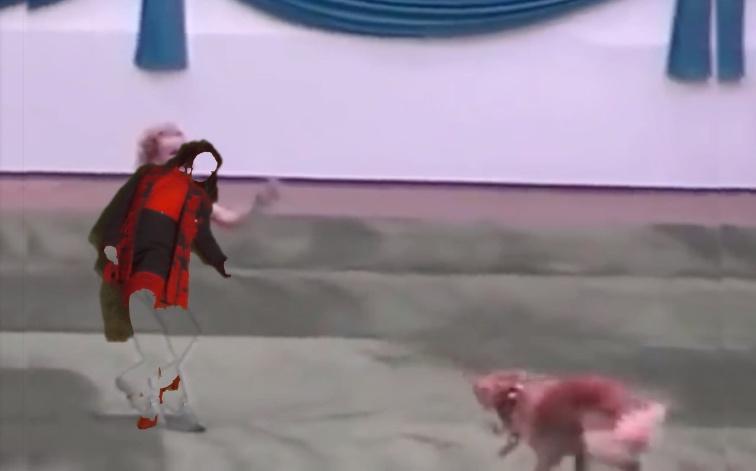 social_screenshot_dogshow_3.jpg