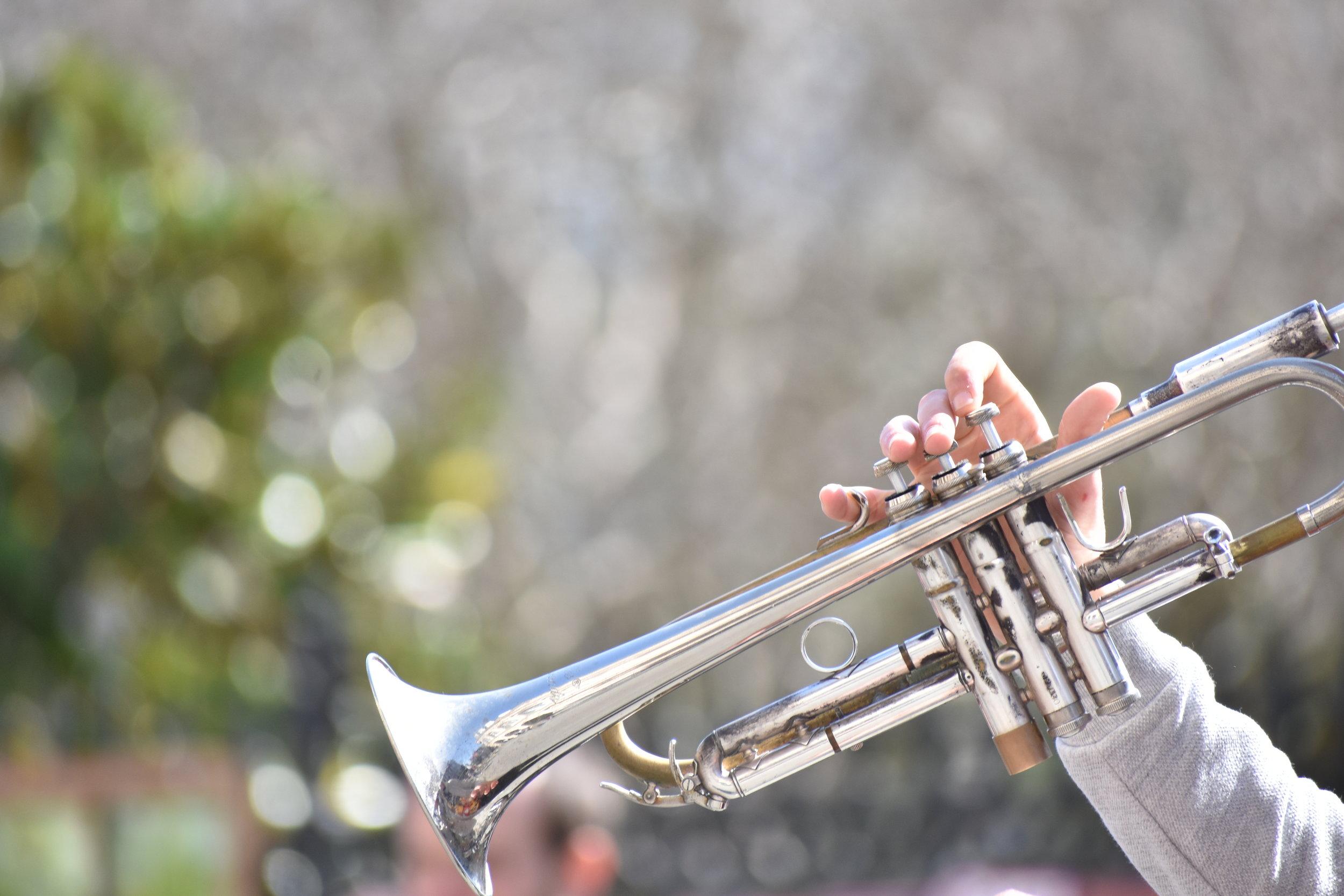 Woodwinds, Brass & Strings -