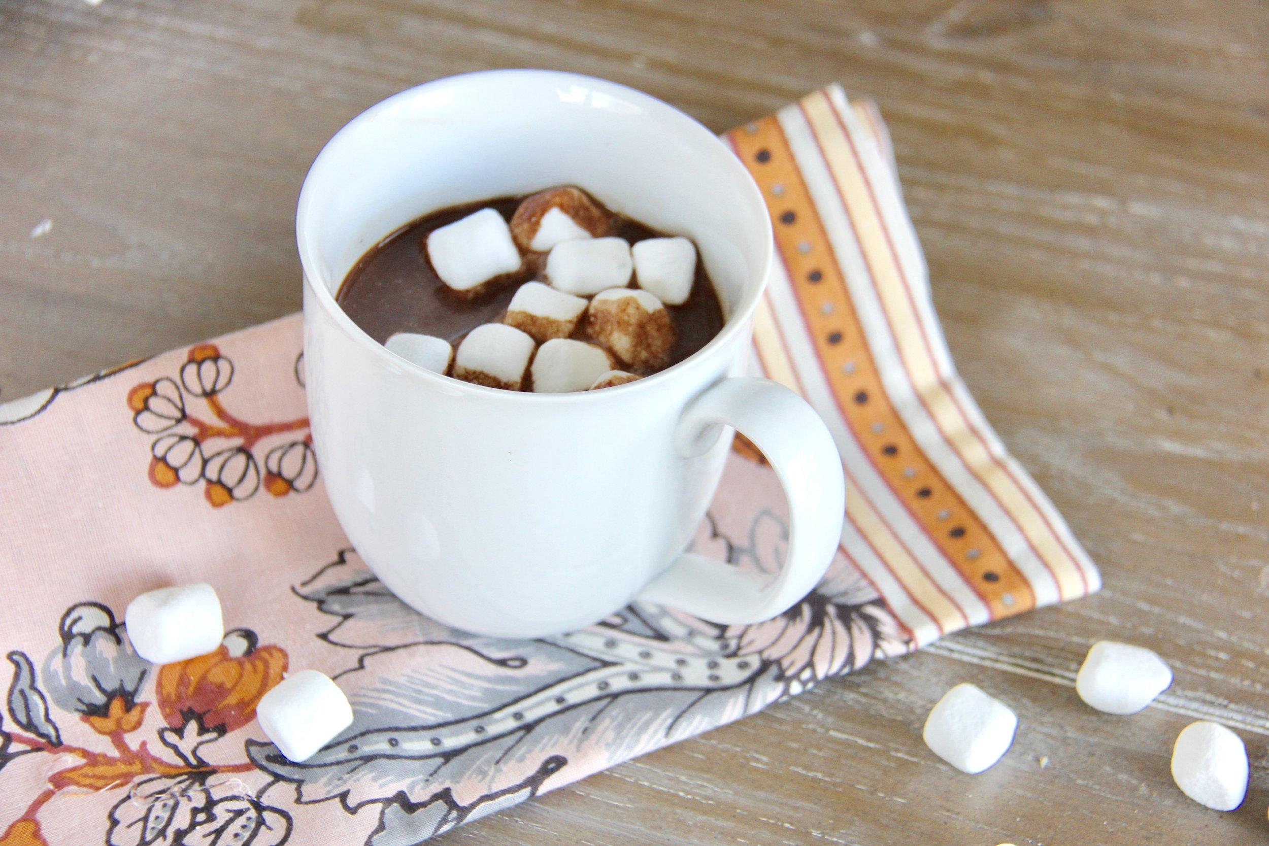 Meg's Spanish Hot Cocoa