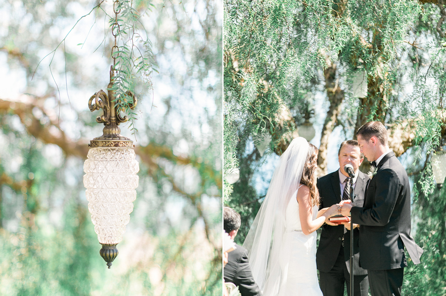 Catalina-View-Gardens-Wedding-25